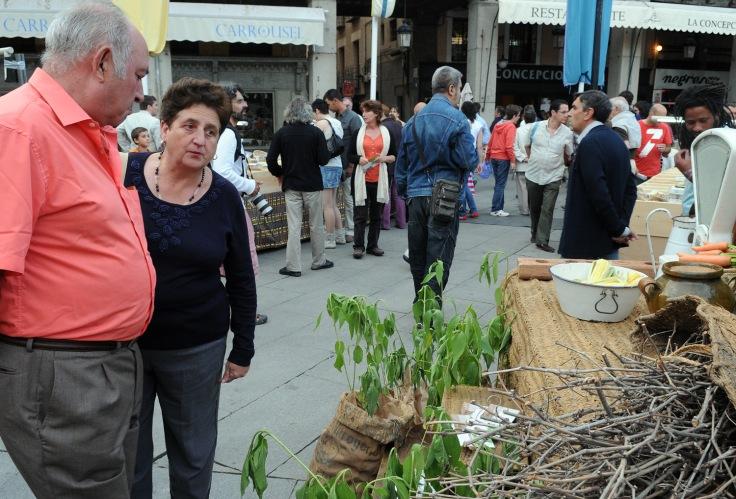 mercado-ecologico_noche-de-luna-llena-2011_-javier-segovia